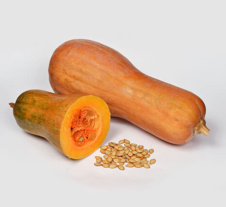 "«Pumpkin (""Dolia"" Variety)» Pumpkins and specialised crops"